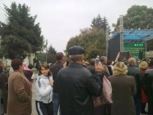 Спиляні ялинки 14.10.2012