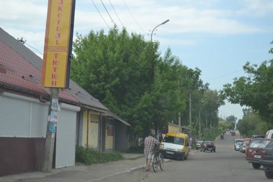 torgivlia_3