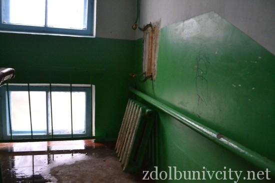 radiator_bandery (2)