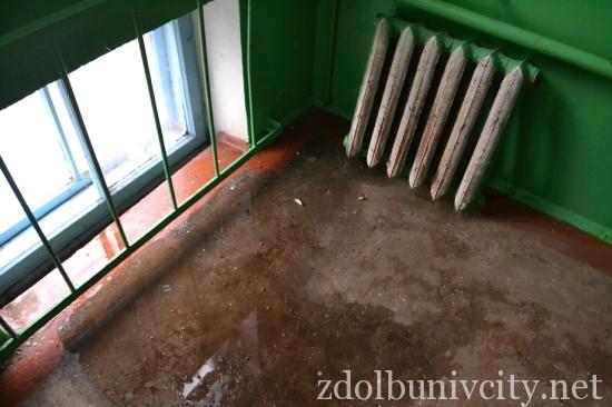 radiator_bandery (4)