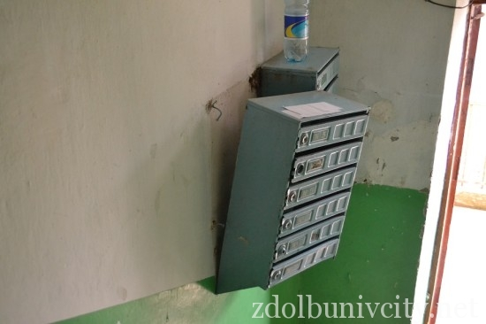 radiator_bandery (6)