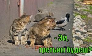 ey-tretim-budesh_1372322238