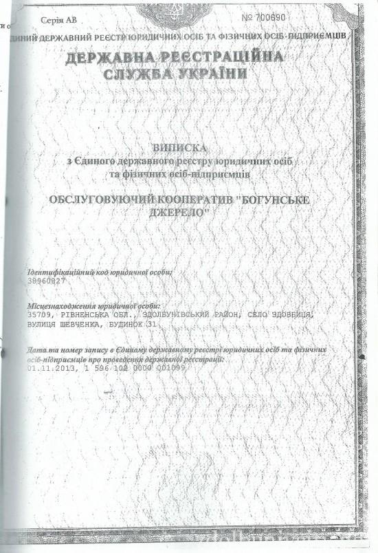 vodopostachanna (6)
