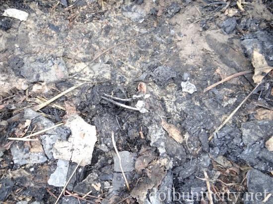 пожежа Будераж (4)