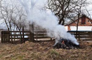 спалювання сухої трави