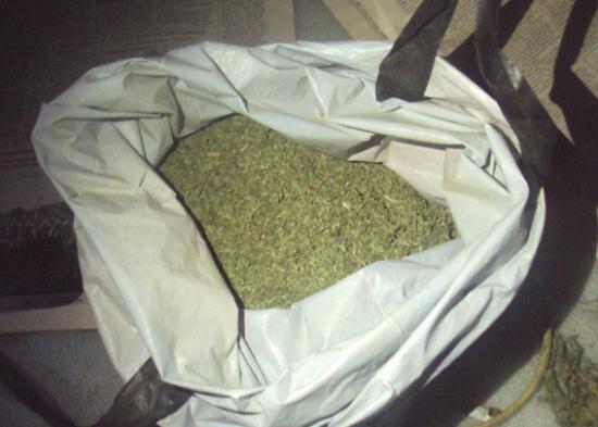 марихуана (2)