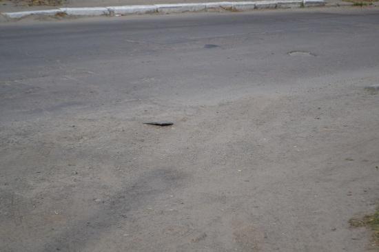перешкода на дорозі (2)