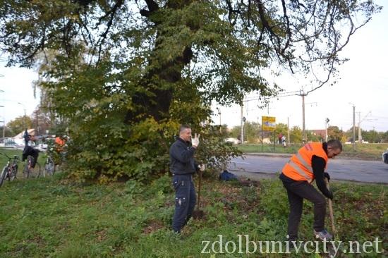 підготовка до висадки дерев (2)