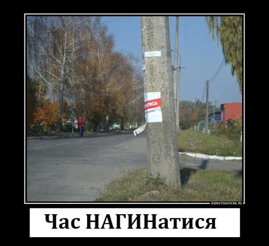 396157_chas-nagibatis_demotivators_to
