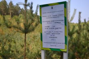 лісництво