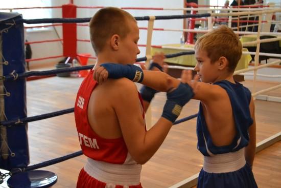 турнір з боксу (3)