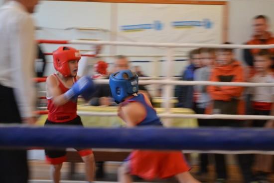 турнір з боксу (5)
