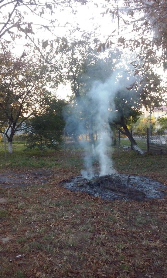 палять листя