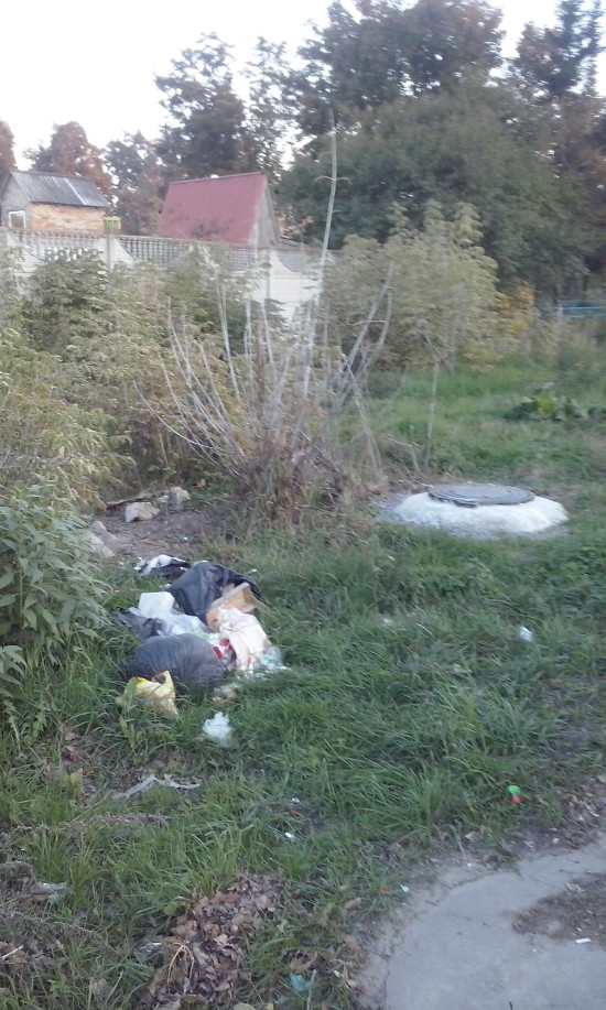 нестача сміттєбаку на Яворницького