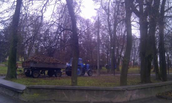 лист в парку