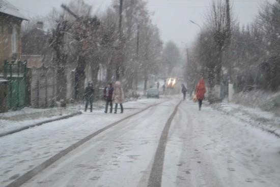 сніг 1 грудня