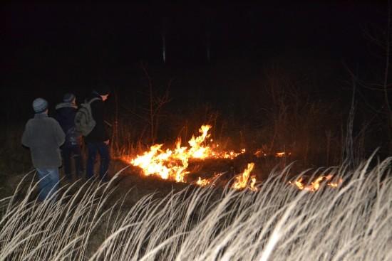 пожежа в гідропарку (1)