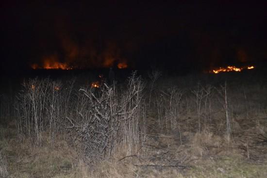 пожежа в гідропарку (2)