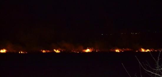 пожежа в гідропарку (3)