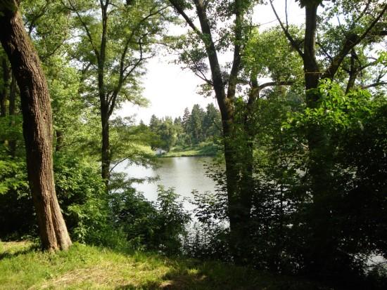 парк над ставом
