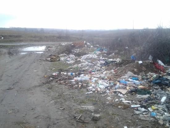 сміття біля Мізоча (2)