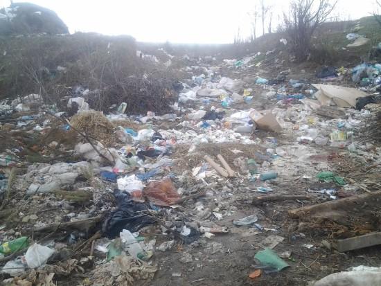 сміття біля Мізоча (3)
