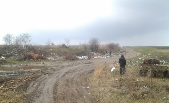 сміття біля Мізоча (4)