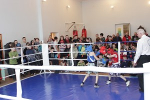 турнір бокс_здолбунів (1)