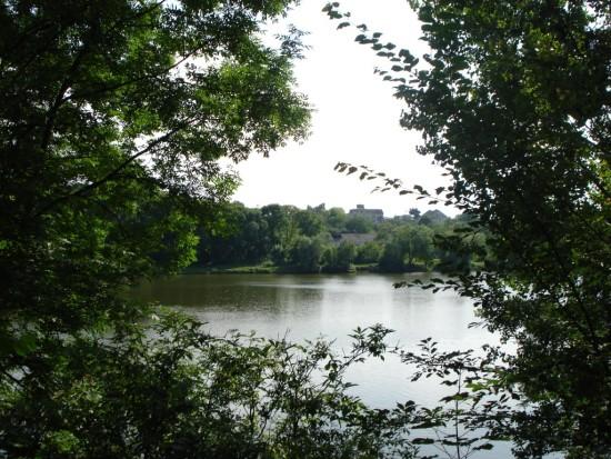 2 Мізоцький ставок, що утворився, коли русло річки Стубелки поглибили ,